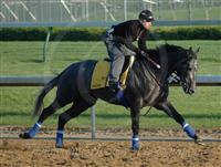 Galloping at Churchill Downs the day before winning the Kentucky Derby.