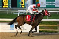 Handicapping the Louisiana Derby