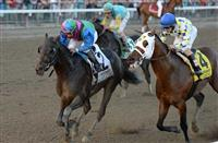 Itsmyluckyday Wins the Woodward Stretch Battle