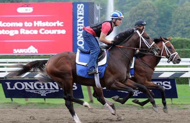 Jess's Dream gallops at Saratoga (8-4-14).