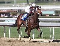 January 29, 2011 - Joe Ja breaking her maiden under Brice Blanc at Santa Anita