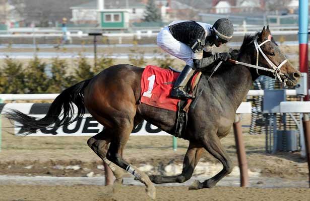 Joint Return wins 2014 Busher