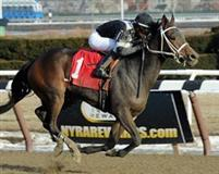 Joint Return winning the 2014 Busher at Aqueduct on February 1.