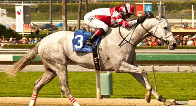 Joyful Victory wins 2013 Santa Maragarita.