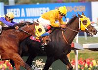 Kinsale King wins the 2009 Vernon Underwood at Hollywood Park