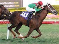 /horse/Kinsella