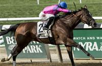 La Verdad to Challenge Males in Fall Highweight