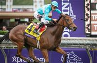 Just How Good is Lady Eli?