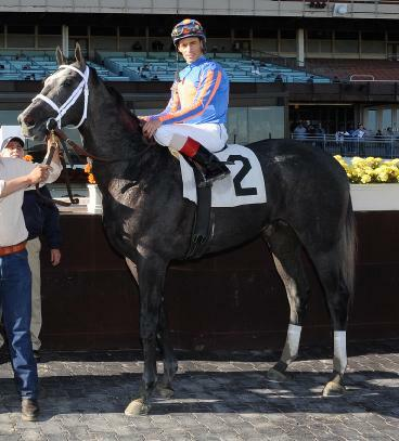 Lauburu breaks maiden at Aqueduct (11-13-10).