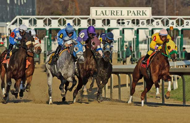 Rapid Redux (Yellow Blinkers; Inside) ridden by J D Acosta wins number 19 of the year tying a mark set by the great Citation in 1948. This Rapid Redux's 20 Straight win. Laurel Park in Laurel, MD on 12/13/11. (Ryan Lasek / Eclipse Sportwire)