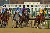 Laurel Park