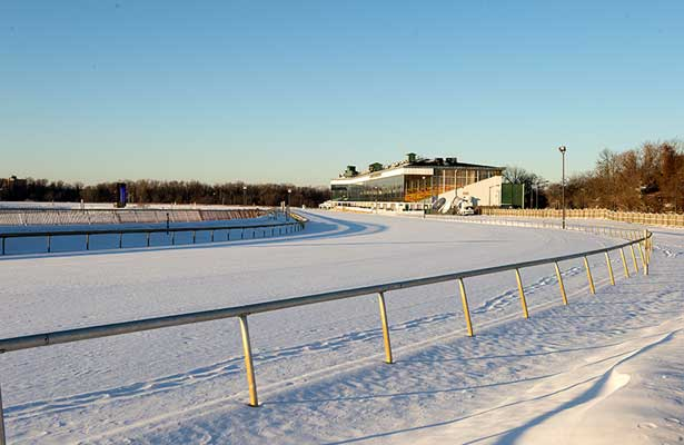 Laurel Park after snow storm.