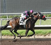 Lava Man wins the 2006 Pacific Classic