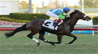 Lentenor breaks maiden at Gulfstream Park.
