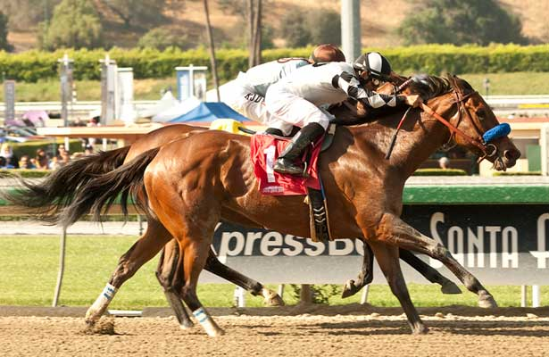 Let Faith Arise wins 2014 Adoration.