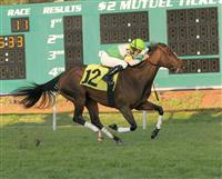 Lomaki captures the 2010 Endeavor at Tampa Bay Downs