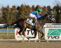 Love and Pride winning the 2012 Affectionately Stakes at Aqueduct.