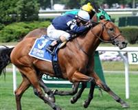 Lubash winds 2014 Ashley T. Cole at Belmont Park on September 14, 2014.
