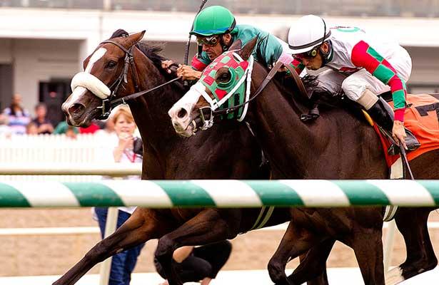 Madame Giry wins 2013 Jameela Stakes