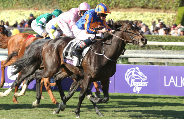 Breeders Cup Turf Sprint