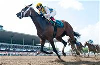 July 27, 2014: Majestic River, ridden by Rosie Napravnik, wins the Molly Pitcher Stakes on Haskell Invitational Day at Monmouth Park in Oceanport, New Jersey Scott Serio/ESW/CSM