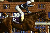 Breeders' Cup Mile - A Look Back at Miesque