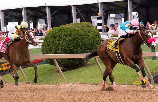Miss Behaviour wins 2014 Miss Preakness.