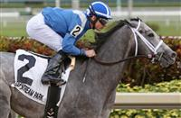 Mohaymen headlines the 2016 Kentucky Derby Future Wager - Pool 2