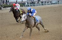 Mohaymen Captures the Remsen Stakes