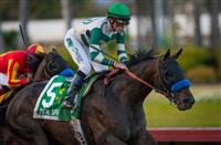 Mor Spirit headlines field for Robert B. Lewis at Santa Anita