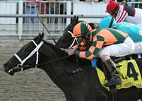 Mr. Bowling ridden by Robby Albarado gets a head in front of Z Dager and jockey Shane Sellers to win the 68th running of the $175,000 Grade III Lecomte Stakes at Fair Grounds.  Hodges Photography / Lou Hodges, Jr.