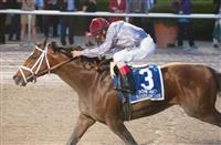 Mshawish continues dirt success in Donn Handicap