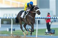 Mubtaahij: Lasix Free for the 2015 Kentucky Derby