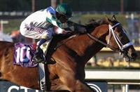 The Eclipse Awards: Very Early 2014 Predictions