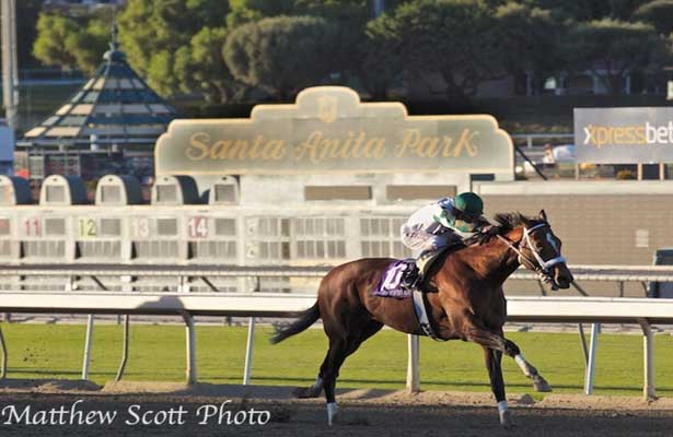Mucho Macho Man wins the 2013 Awesome Again Stakes at Santa Anita