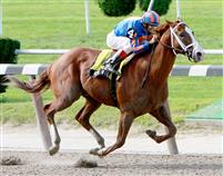 Munnings takes the 2009 Tom Fool with ease