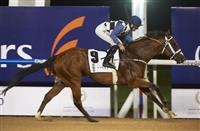 My Catch under Pat Dobbs claimed the Listed Garhoud Sprint Sponsored by Lincoln Continental and was one of five winners at Meydan Racecourse for trainer Doug Watson on Thursday evening.