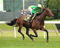 Mystical Star wins 2012 New York