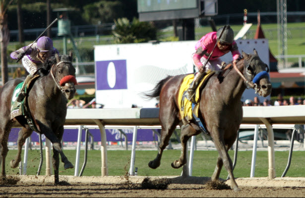 New Year's Day wins the BC Juvenile