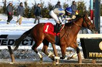 Favorite Noble Moon with Irad Ortiz, Jr. wins the 144th running of the Grade II Jerome Stakes for 3-year olds, going 1 mile 70 yards on the inner dirt, at Aqueduct Racetrack. Trainer Leah Gyaramati. Owner Treadway Racing Stable
