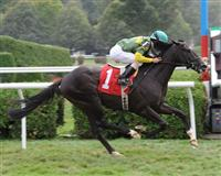 Noble Tune breaks maiden at Saratoga (9-3-12)