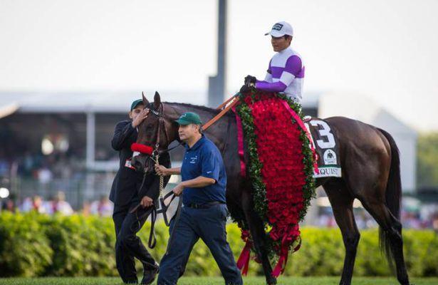 Kentucky Derby 2016 Winner Nyquist Returns To Santa Anita