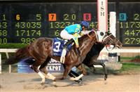 Ocho Ocho Ocho equals Jackpot at Delta Downs