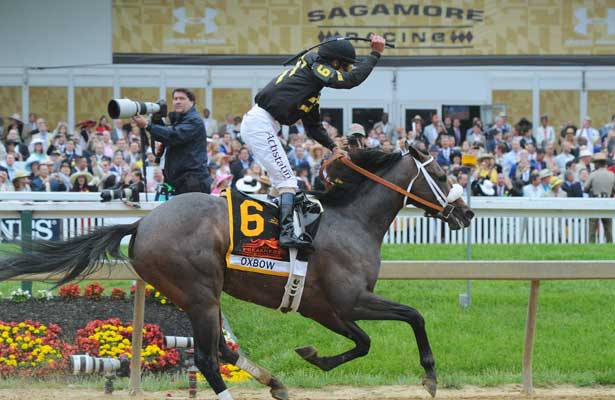 Oxbow (no. 6), ridden by Gary Stevens and trained by D. Wayne Lukas, wins the 138th running of the grade 1 Preakness Stakes for three year olds on May 18, 2013 at Pimlico Race Course in Baltimore, Maryland (Bob Mayberger/Eclipse Sportswire)