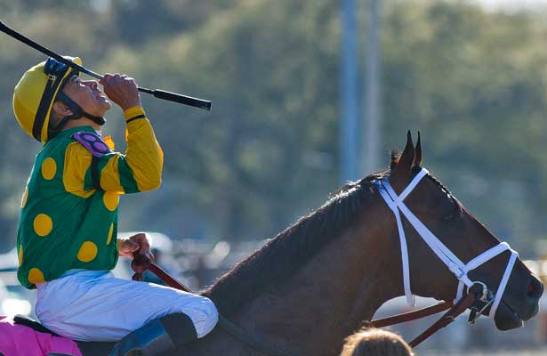 March 29, 2014: Palace Malice, ridden by Mike Smith, wins the New Orleans handicap on Louisiana Derby Day at the Fairgrounds Race Course in New Orleans, LA. Scott Serio/ESW/CSM