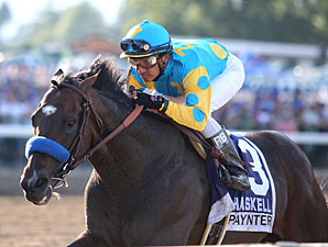 Paynter Will Go Next in Travers