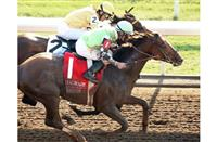Pick of the Litter, outside, edges Departing to win of the 2014 Hagyard Fayette