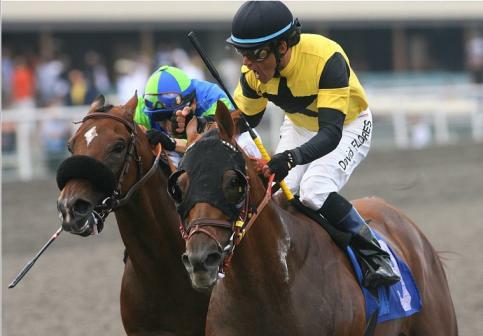 Awesome Gem beats Rail Trip in 2010 Hollywood Gold Cup.