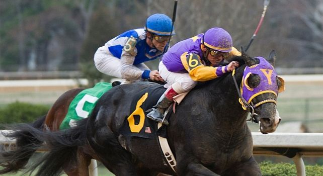 Archarcharch wins 2011 Southwest Stakes.