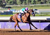 Pimpernel winning an Allowance Optional Claiming race at Santa Anita Park.